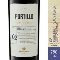 Vino-Tinto-Portillo-Cabernet-Sauvignon-750-ml-_1