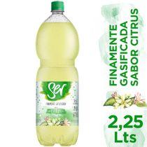 Agua-Saborizada-Ser-Citrus-Finamente-Gasificada-225-Lts-_1