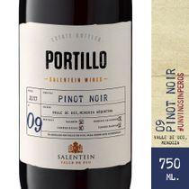 Portillo-Pinot-Noir-750-CC_1