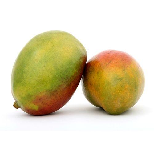 Mango-x-Ud-_1
