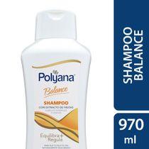 Shampoo-Polyana-Balance-970-Ml-_1