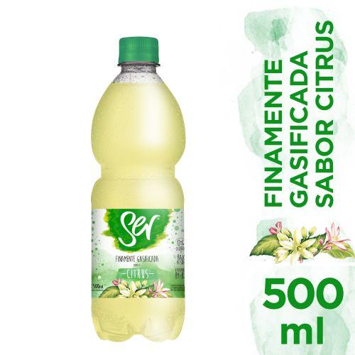 Agua-Saborizada-con-Gas-Ser-575-ml-_1