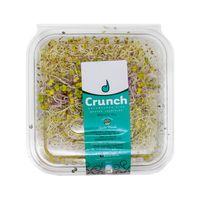 Mix-de-Brotes-Sueño-Verde-100-Gr-_1