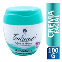 Crema-Facial-Teatrical-Humectante-100-Gr-_1