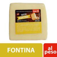 Queso-DIA-Fontina-250-Gr-_1