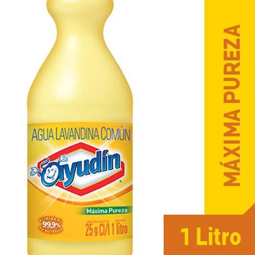 Lavandina-Ayudin-Maxima-Pureza-botella-1-Lt-_1