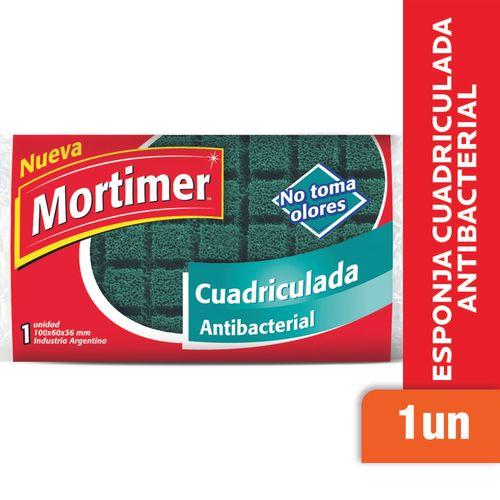 Esponja-Antibacterial-Mortimer-1-Un-_1